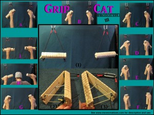 Grip CAT compilation 3 with magenta text and III-page-001